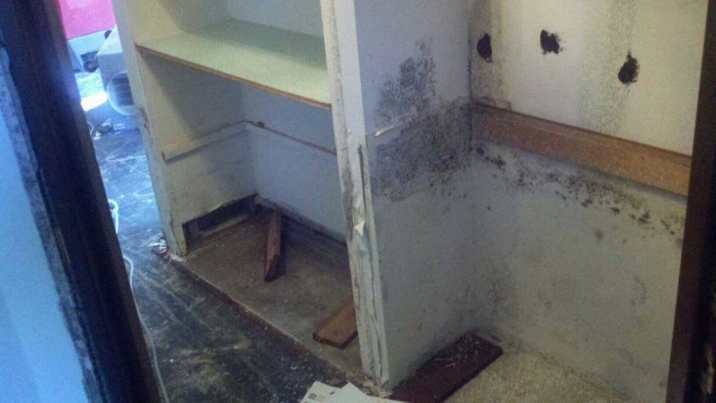 dana point mold removal, dana point mold remediation