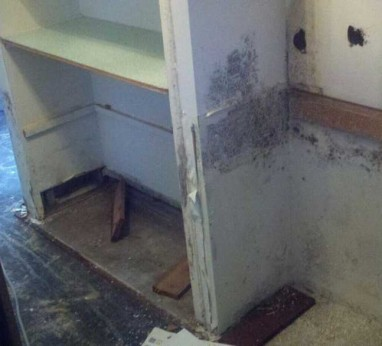 Dana Point Mold Removal