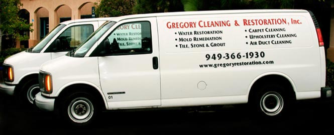orange county mold removal